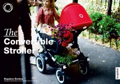 the convertible stroller - Bugaboo Donkey