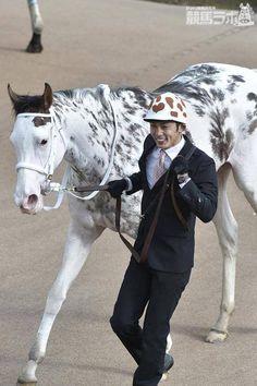 "BUCHIKO (JPN) Full thoroughbred, registered white with what they're calling ""dappled"" markings Kathiyawadi Horse, Thoroughbred Horse, All The Pretty Horses, Beautiful Horses, Horse Coat Colors, Horse Markings, Horse Facts, Horse Racing, Race Horses"