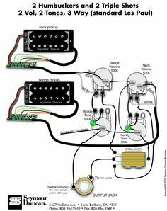 2 humbuckers  3 way toggle switch  2 volumes  2 tones  coil