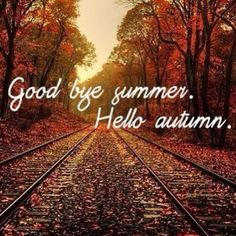 Welcome September Images Pictures Photos First Day Of Autumn, Autumn Day, Hello Autumn, Autumn Leaves, Fall Days, Autumn Summer, Autumn Harvest, Seasons Of The Year, Best Seasons