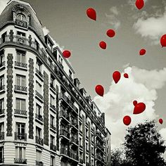 Black & white, red balloons so love! In Paris. Black And White Colour, Black And White Pictures, White Art, Red And Grey, Red Black, Splash Photography, Black And White Photography, Color Pop, Color Splash Photo