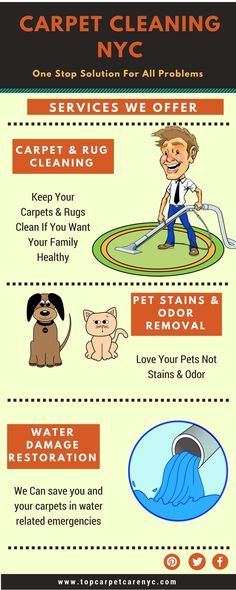 Bagless Vacuum Cleaner, Cordless Vacuum Cleaner, Best Lightweight Vacuum, Vacuum For Hardwood Floors, Professional Carpet Cleaning, Odor Remover, Love Your Pet, Healthy Pets
