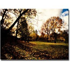 Trademark Fine Art Fall is Here Canvas Wall Art by Ariane Moshayedi, Size: 16 x 24, Multicolor