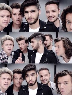 Zayn Malik / Niall Horan / Liam Payne / Louis Tomlinson / Harry Styles / One Direction