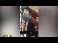 Kedi Bağırsağıyla İp Atladı | Hayvan Sever Haber