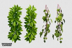 The Foliage Pack | DesignerCandies
