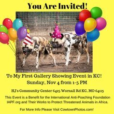 to My First Event in Kansas City on Nov Surviving In The Wild, First Event, You Are Invited, Wildlife Photography, Kansas City, Fundraising, Photo S, Charity, Benefit