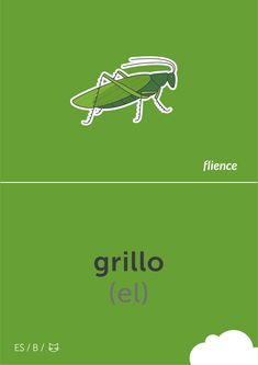Grillo #flience #animal #insects #english #education #flashcard #language