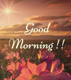 Latest good morning images with flowers ~ WhatsApp DP, Love DP, DP Images, WhatsApp DP For Girls Good Day Images, Good Morning Friends Images, Good Morning Photos Download, Good Morning Nature, Good Morning Beautiful People, Good Morning Images Flowers, Good Morning Cards, Good Morning Images Download, Morning Pictures