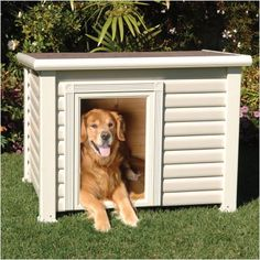 112 Best Animal Houses Images Pets Animal House Pet Houses