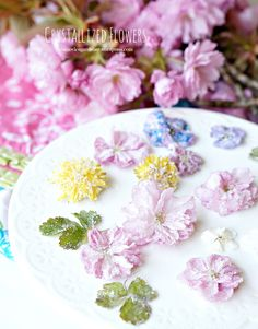 #how to make crystallized/candied flowers