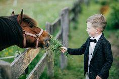 Hochzeitsdienstleister Österreich | Zauberhafte Hochzeiten Horses, Animals, Paper Mill, Bride Groom, Perfect Wedding, Floral Headdress, Newlyweds, Wedding Photography, Animales