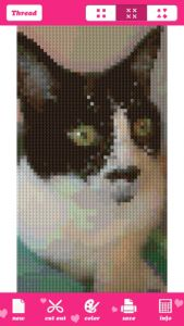 An app that converts your photos into cross stitch patterns - so cool! Need to remember this for the future.