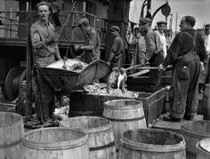 fulton-fish-market-new-york-Berenice-Abbott-1930