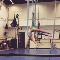 Beautiful transitions to seated and standing; cool roll/drop and splits work Aerial Acrobatics, Aerial Dance, Aerial Silks, Aerial Hammock, Aerial Yoga, Free Yoga Videos, Gymnastics Poses, Partner Yoga, Aerial Arts