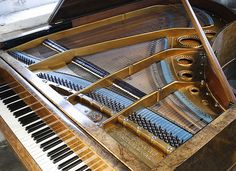 Bechstein Model V Grand piano for sale with a burr walnut case ...