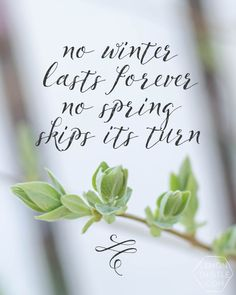 No Winter Lasts Forever. No Spring Skips It's Turn. Free printable- love this quote