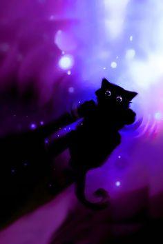 A sweet cat!