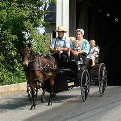 Family~The family is the most important social unit in the Amish culture. Large families with seven to ten children are common