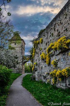 The medieval walls of Rothenburg, Bavaria, Germany  • photo: Patrick Sean