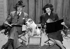 "William Powell, Myrna Loy and Asta(Skippy) study script for ""The Thin Man"" (1934) Skippy was in 2 thin Man films as well as other movies, and was retired in 1941 at the age of 10."