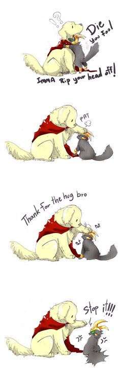 Thor and Loki's relationship as told by animals - I'm not a Loki fangirl or anything but these drawings and expressions are just too damn adorable. Lokicat in the last panel, hysterically accurate lol