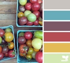 Produced Hues - http://design-seeds.com/index.php/home/entry/produced-hues11