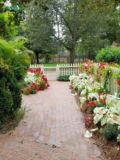 A brick walkway in a courtyard planting at Colonial Williamsburg.