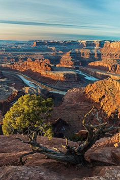 Overlook at Dead Horse Point, Moab, Utah. Dead Horse Point State Park is a state park of Utah in the United States, featuring a dramatic overlook of the Colorado River and Canyonlands National Park. State Parks, Places To Travel, Places To See, Beautiful World, Beautiful Places, Moab Utah, Utah Usa, Sedona Arizona, Clearwater Beach
