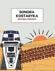 KOSTARYKA_SONORA_NATURAL PROCESS_sierpień2015