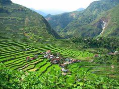 The rice terraces of Banaue.