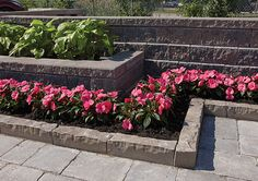 Landscape Contractors in Kitchener - Adams Landscape Supply is Landscape Products Supplier in Canada, offers quality landscape supply & design services Canada Landscape, Landscape Pavers, Landscaping Supplies, Service Design, Patio, Canning, Plants, Website, Check