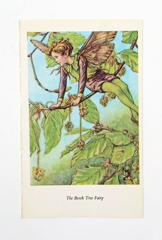 Beech Tree Flower Fairy Print, Vintage Bookplate, Fairy Picture, nursery decor, green by PeonyandThistlePaper on Etsy https://www.etsy.com/listing/198277096/beech-tree-flower-fairy-print-vintage