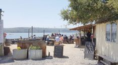 Tomales Bay: oesters voor lunch bij The Boat Oyster Bar, Hog Iland Oysters