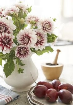 mauve tinged Dahlias and plums