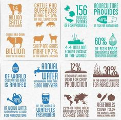 38% of the world's land is used for agriculture and there are 4.4 million fishing vessels and 1.4 billion cattle in the world.  See more facts and figures in this new Food and Agriculture Organization of the United Nations (FAO) infographic: http://j.mp/1hM2vRM