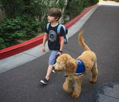 When a Man Questioned My Son's Need for a Service Dog