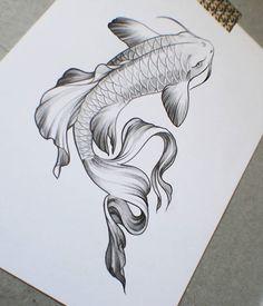 tattoo for a friend :) #tattooart #tattoo #tattoos #fish #fishtattoo #fishtattoodesign #illustration #dessin #art #draw #arttattoo #fishart #fishartwork #combattant #carpe #koi #pencil #paper #illustrationtattooa.postrophe