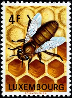 Bee & honeycomb stamp issued by Luxembourg, 1973 to publicize the importance of beekeeping.