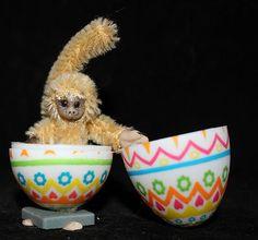 "OOAK Prosculpt Clay 2"" mohair Monkey in egg - Artist Natalya PhD Collectables"