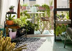 발코니 문을 열어둔 거실. 녹색식물이 가득한 발코니에는 베이지 접이식 라운드테이블과 접이식 의자 2개가 있어요.