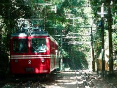 Trem do Corcovado in Rio Places To Visit, City, Nature, Rio De Janeiro, Naturaleza, Cities, Nature Illustration, Outdoors, Places Worth Visiting