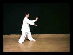 Yang Tai Chi Chuan, Master Yang Jun 103 Movement Hand Form, Section 1