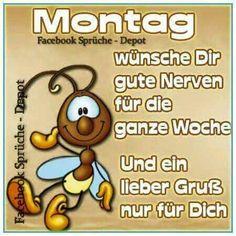 morgen , wer will auch einen kaffee ? - http://guten-morgen-bilder.de/bilder/morgen-wer-will-auch-einen-kaffee-252/
