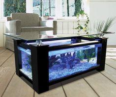 built in home aquarium - Google Search