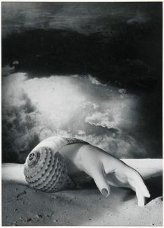 Dora Maar: Paris au temps de Man Ray, Cocteau et Picasso - L'Œil de la photographie
