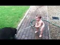 Baby spraying dogs with water--there is nothing cuter than a baby's belly laugh