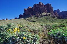 The Superstition Mountains,less then 45 minutes from #Scottsdale are fantastic for #hikingNo fabrication..,we'll explore the legends and stories behind the tales of the Superstition Mountains. https://www.youtube.com/channel/UCL_BC_CdxsiQ3XJyDDPF6NA