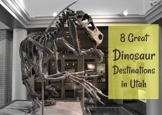 8 Utah Dinosaur Destinations for Families, what fun family adventures this will make this summer! The kids will love this!