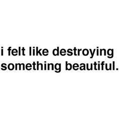""""""" I felt like destroying something beautiful."""""""